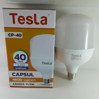Bola Lampu Tesla Led 40W
