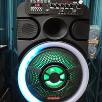 Speaker Portable meeting Asatron Aurora 12 inch