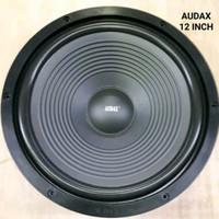 Speaker Audax 12 Inch Ori Sepeker Audax 12 Inc Speker Spiker AUDAX