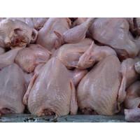 Ayam Potong Segar 1kg