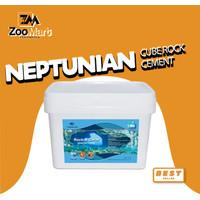 Neptunian Cube Rock Cement