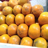buah jeruk Medan(Brastagi madu)di jamin manis