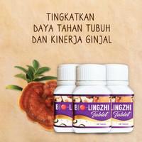 Bio Lingzhi Original 💯%Obat Herbal Asam Urat BioLingzhi Original