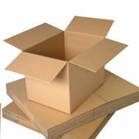 Dus kardus box peking packaging packing paking
