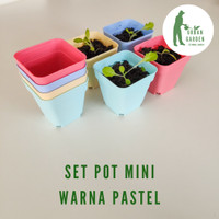 [Urban Garden] Set pot tanaman mini warna pastel