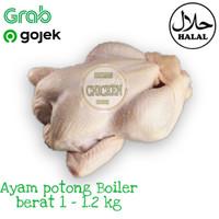 Daging ayam potong boiler karkas fresh segar termurah berat 1 - 1.2 kg