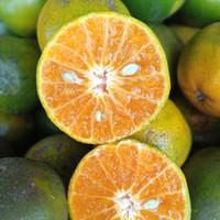 jeruk khusus peras/manis kulit tipis banyak air