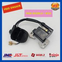 Coil/CDI Motor Mini GP/Trail/ATV