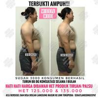 OBAT DIET PELANGSING MIDDLE AMPUH DAN AMAN