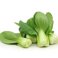 Sayuran Segar Sayur Jakarta FRESH Pakchoy 100 Gram