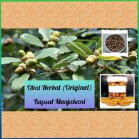 obat herbal original 100% kapsul manjakani melancarkan haid menstruasi