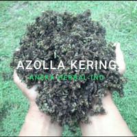 AZOLLA KERING (AZOLLA PINNATA-AZOLLA MICROPHYLLA)
