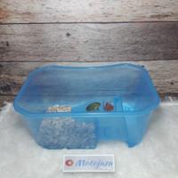 Tempat kura kura 25x17x11 turtle tortoise aquarium vivarium box
