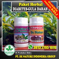 Obat Diabetes Kering Basah Kencing Manis Gula Darah Herbal De Nature