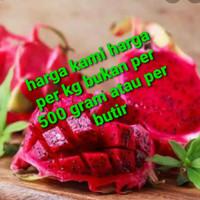 buah naga merah per kg size jumbo