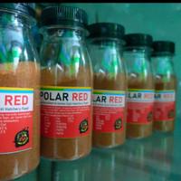 atemia polar red