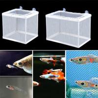 Boyu net breeder NB 3201 jaring single Aquarium sekat ikan karantina