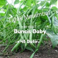 ( 10 Gram ) Benih Buncis Baby ( tidak merambat )
