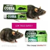 Lem Tikus / Jebakan Tikus / Cobra / Lem Tikus Cobra Super Lengket