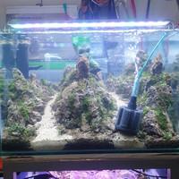aquascape aquarium iwagumi jadi ukuran 60 cm fullset