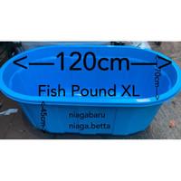Bak Kolam Ikan Besar Fishpond Taiwan XL BIRU Khusus GOJEK daerah BOGOR
