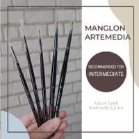 Artemedia manglon brush set