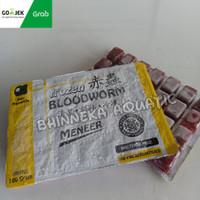 Cacing Beku Frozen Bloodworm Kapsul Meneer 100gram Grab Gojek Only