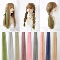 Hairclip Hair Clip Pin Extention Warna Highlight 55 - 60 cm Part 1