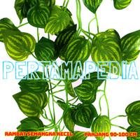 Daun Rambat Plastik/ Daun Rambat Artificial/ Semangka K90
