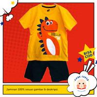 Baju Anak/Setelan Anak laki-laki Motif DINO HELLO BEE 1-10 thn