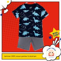 Baju Anak/Setelan anak laki-laki Motif Dino Navy Fullprint 1 - 10 thn