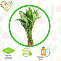 sayur organik - kangkung organik 250 gram