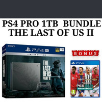 PS4 PRO THE LAST OF US 2 LIMITED EDITION