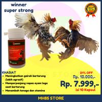 Jamu Ayam Aduan | Doping Ayam Bangkok Menambah Stamina Laga