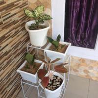 Rak Bunga Besi Minimalis 4 Tatakan Pot (kargo)