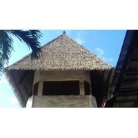 Atap Alang-alang Sintetis
