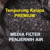 Media filter Penjernih Air (Arang Batok Kelapa) Karbon Aktif 100% ASLI