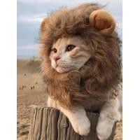 Kostum Baju Hewan Kucing/ Anjing Model Rambut Singa