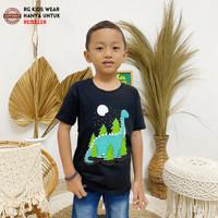 Baju Kaos Anak laki laki Perempuan Karakter Hewan DINOsaurus Fast