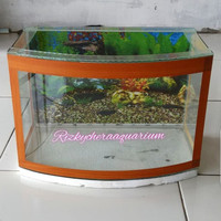 aquarium kaca depan cembung P 38 x L 20 x T 26 Type S