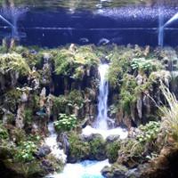 Aquarium Aquascape Full Set Design Tema Water Fall