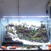 aquascape aquarium fullset jadi iwagumi 60/80 cm