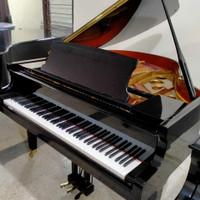 Piano Baby Grand Ritmuller 945381