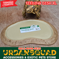 FEEDING DISH REPTCO XL KURA REPTILE SULCATA TORTOISE ALDABRA PARDALIS