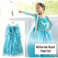 Princess Anna Elsa Frozen Dress Costume | Baju Kostum Putri Anak 1