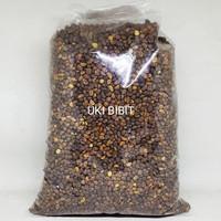 ( 250 Gram ) Benih Kangkung Darat   Kangkung Cabut Curah   Microgreens