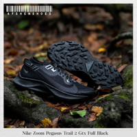 Sepatu Original Nike Zoom Pegasus Trail 2 Gtx Full Black BNIB