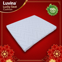 Luvina Lucky Seat Cushion / Bantal Alas Duduk Jok Latex Fengshui