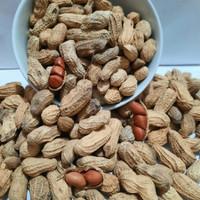 SGS Kacang Tanah Kacang kulit sangrai 1 kg