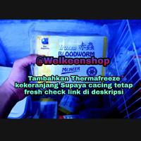 Meneer Frozen Bloodworm 100gr Cacing Beku Meneer 100 gram Cabek